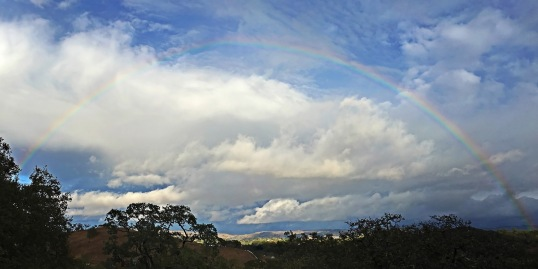 rainbow sky 11_15 web